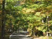 helen road